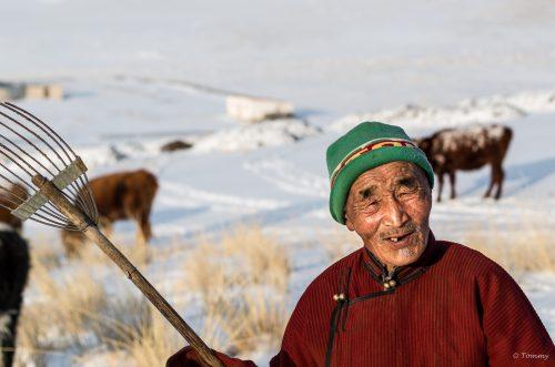 Bauer, Nomade, Mongolei, Steppe, Wüste, Ulan Bator