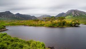 Connemara, Ireland, Pine Island